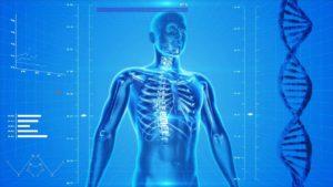 【栄養学】血圧が高い対策と予防する食べ物を紹介!食事法で薬いらずの体つくり