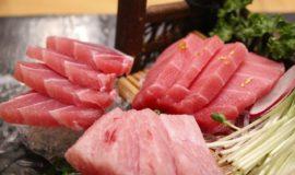 【栄養学】魚の栄養成分について紹介!旬や部位ごとの栄養効果とは