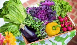 【栄養学】キャベツの栄養成分について紹介!キャベツの効能と栄養効果を高めるコツ