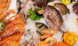 【栄養学】イカ、エビ、タコの栄養成分について紹介!海鮮の効能と栄養効果を高めるコツ