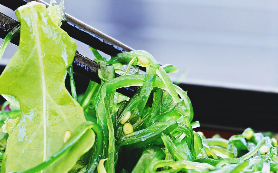 【栄養学】ごまの栄養成分について紹介!ごまの食品の効能と効果を高めるコツ